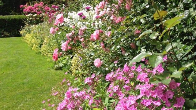 Tuinenwedstrijd biljartlaken en bloementuin de heemsteder for Www bloem en tuin nl