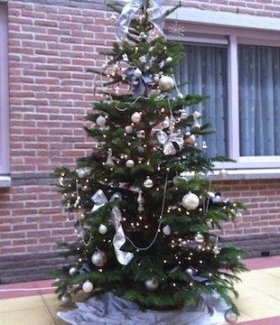 Toch een kerstboom voor bewoners De Heemhaven