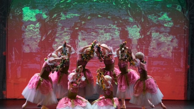Klassiek ballet Sint-Petersburg in Hoofddorp