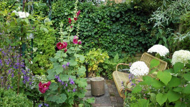 tuinenwedstrijd