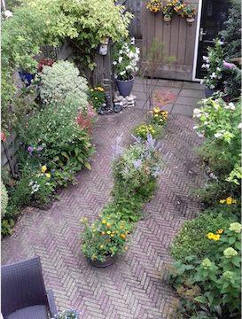 Tuinenwedstrijd: dit is de mooiste van deze week